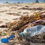 The NSW Plastics Action Plan