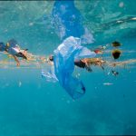 Nature Sustainability papers on ocean plastic.